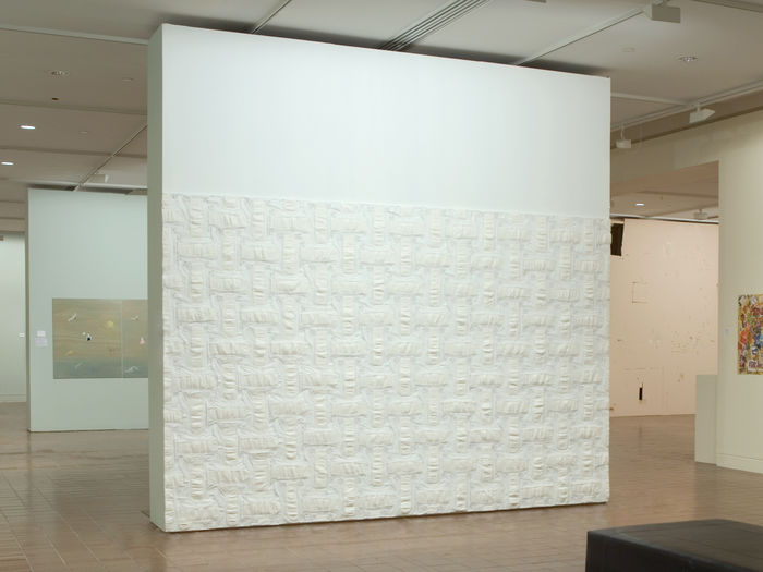 Canvas 2007 (Auckland Art Gallery)